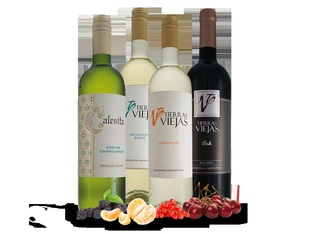 Probierpaket Familia Falasco aus Argentinien mit 5 Flaschen8,00? pro l