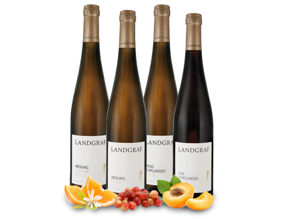 Kennenlernpaket Lagenweine vom Weingut Landgraf aus Rheinhessen