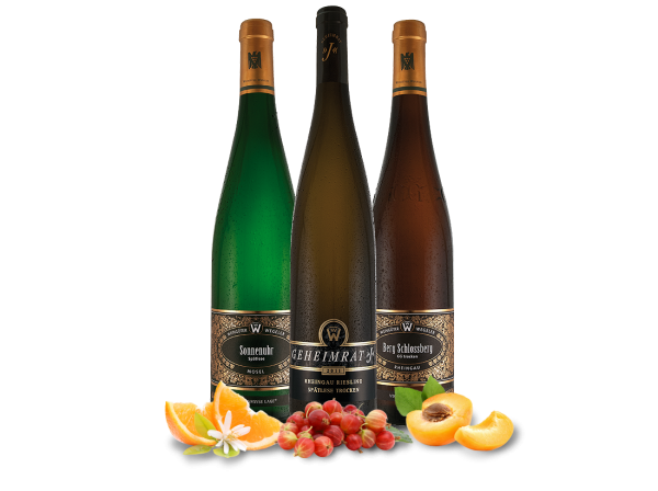 Kennenlernpaket Weingut Wegeler 3 Flaschen Große Lagen