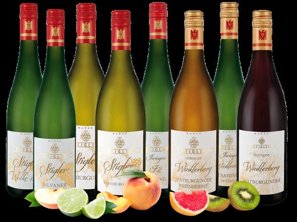 Kennenlernpaket Weingut Stigler aus Baden