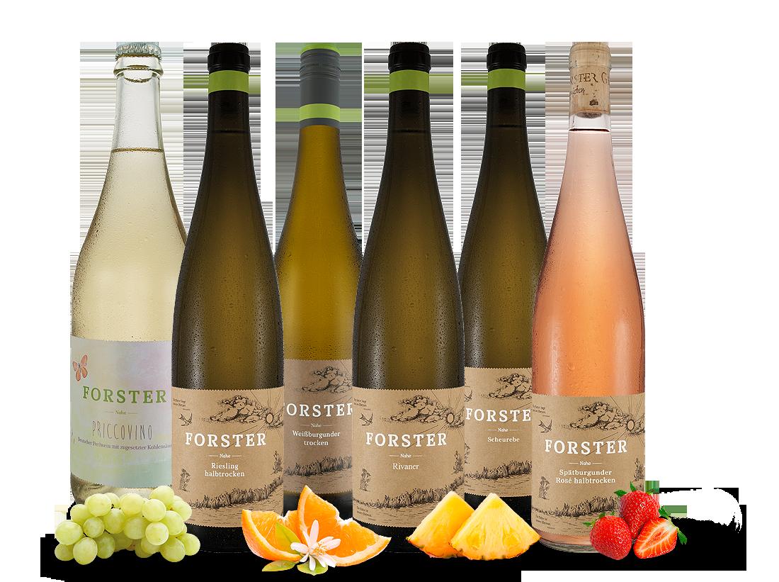 Georg Forster Wein-Probierpaket - naturnahe und...