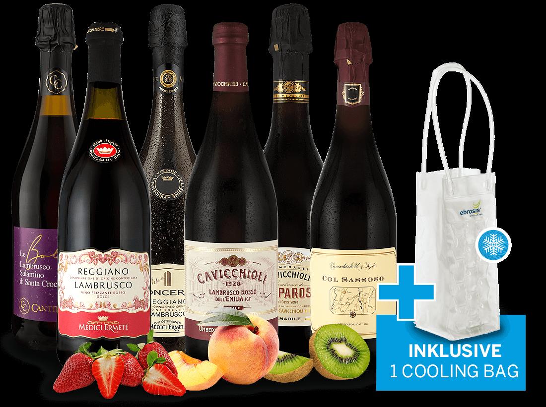 Probierpaket Lambrusco mit 6 Flaschen inkl. Ice Cooling Bag10,00? pro l