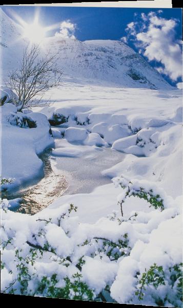 Grußkarte 'Winterwald'