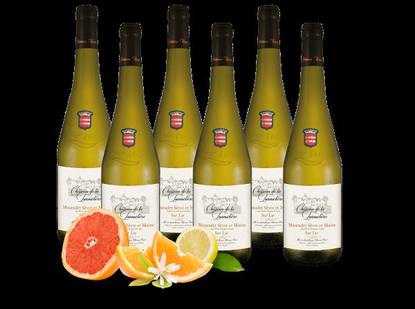 Vorteilspaket 6 Flaschen Château de la Turmelière Muscadet Sèvre et Maine sur Lie AOC