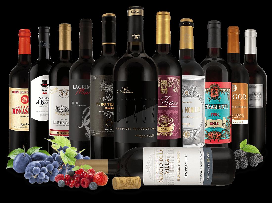 Probierpaket 12 Flaschen spanische Rotwein-Exzellenz7,77? pro l