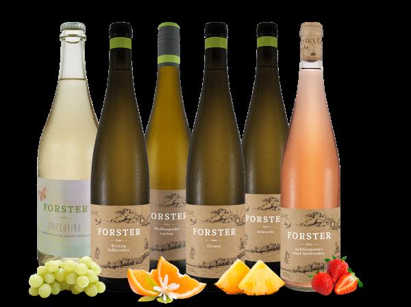 Georg Forster Wein-Probierpaket - naturnahe und exzellente Weine