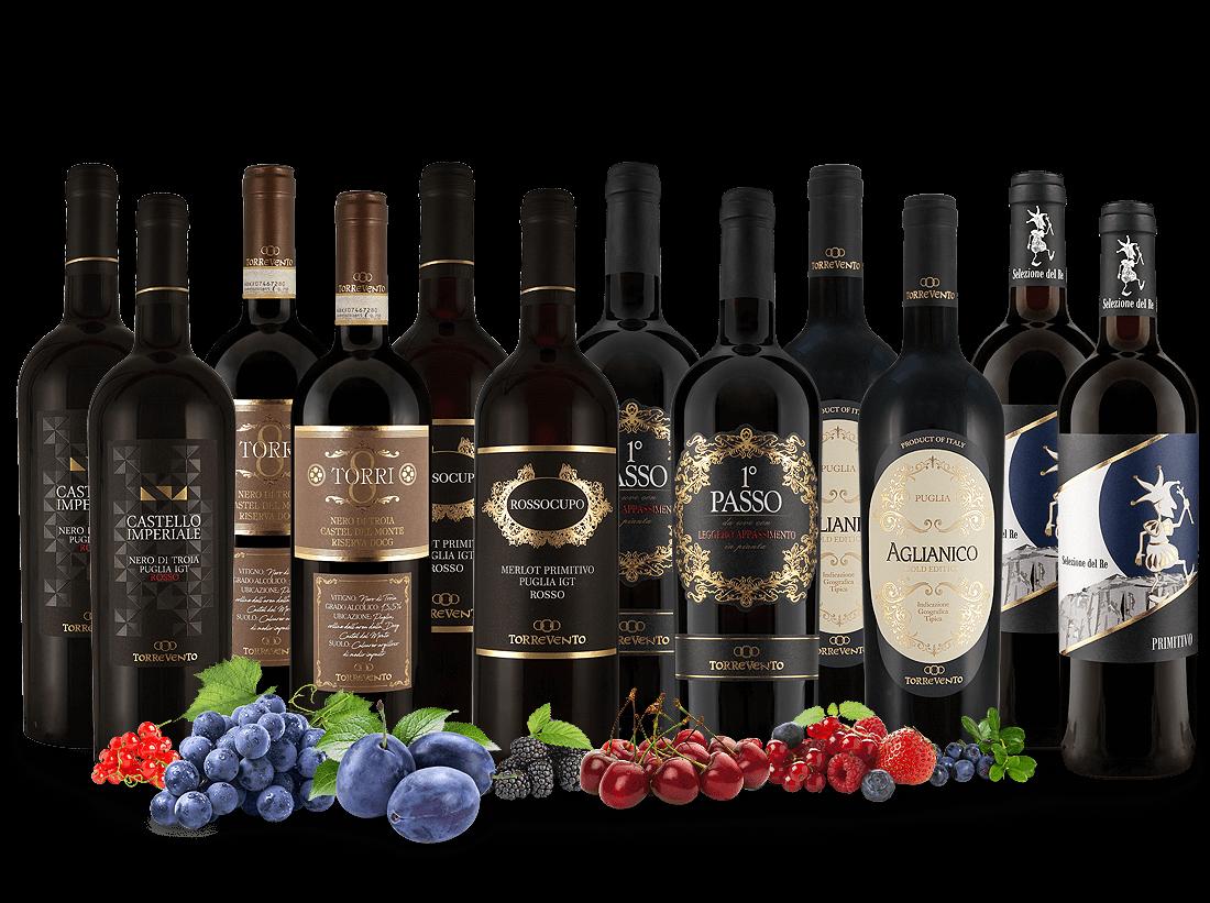 Probierpaket XL Die besten Rotweine von Torrevento7,77? pro l