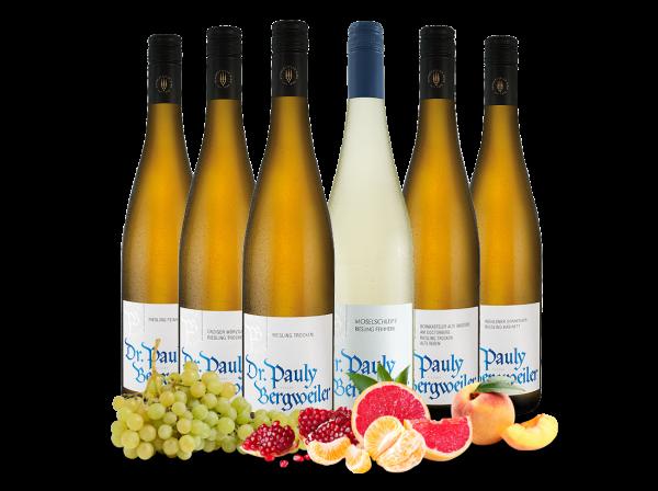 Kennenlernpaket vom Weingut Dr. Pauly-Bergweiler von der Mosel