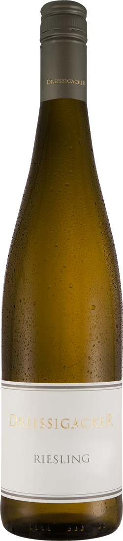 Weißwein Dreissigacker Riesling Rheinhessen 14,00? pro l