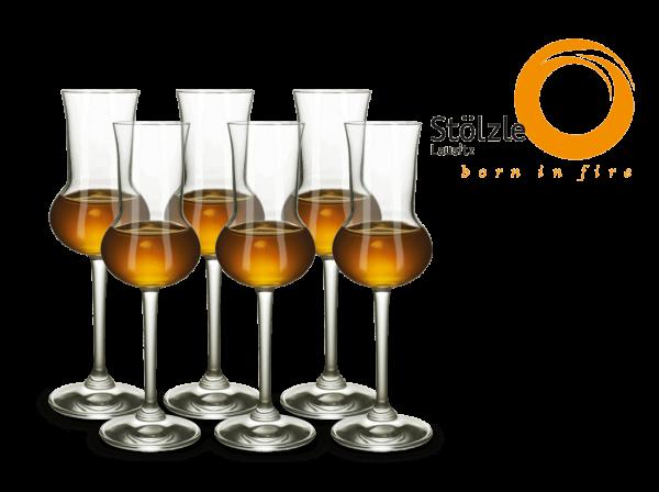 Stölzle Grappaglas Professional 6er Set