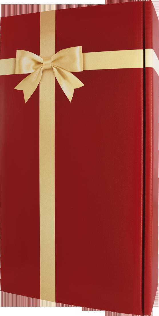 Präsentkarton Schleife Bordeaux für 2 Flaschen