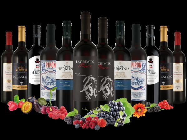 Best of Spanien Rotwein Entdeckerpaket