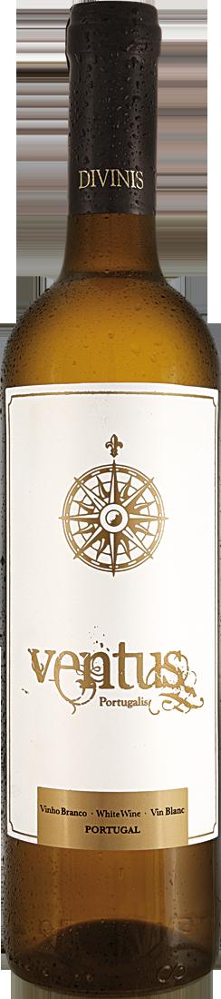 Weißwein Divinis Ventus Portugalis Vinho Branco Lisboa 5,99? pro l