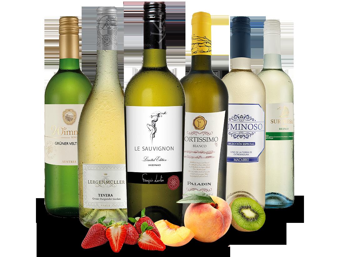 Probierpaket Exzellente Weißwein-Selektion8,87? pro l