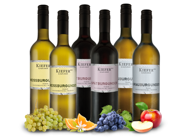 Weingut Kiefer Burgunder-Probierpaket