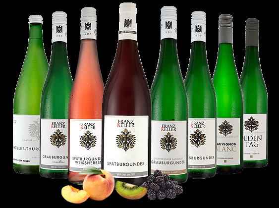 Großes Kennenlernpaket Weingut Franz Keller aus Baden
