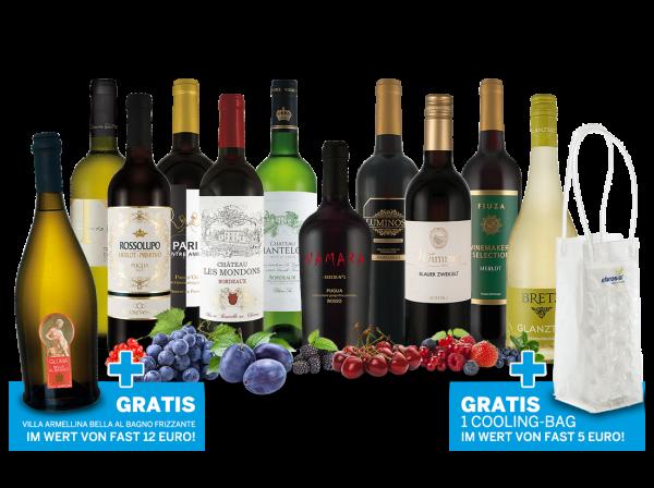 Das große ebrosia Sommerend-Party-Weine Paket mit Frizzante und Cooling Bag gratis