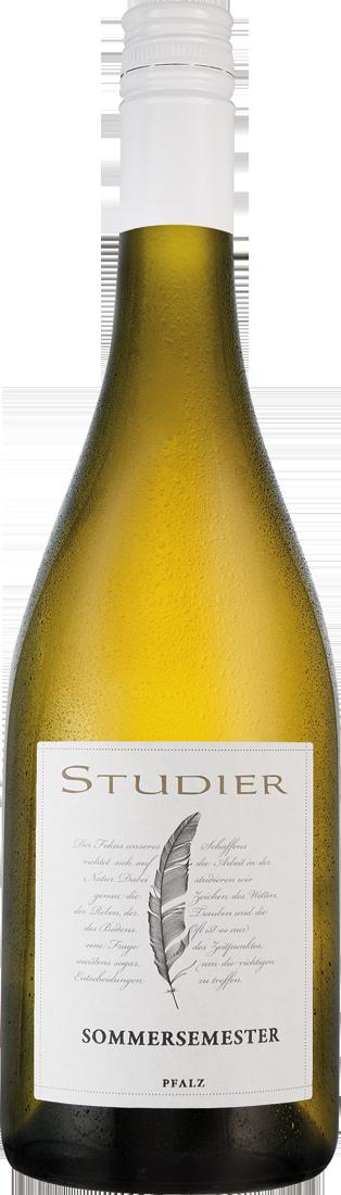 Weißwein Studier Weißwein-Cuvée Sommersemester Pfalz 11,33€ pro l