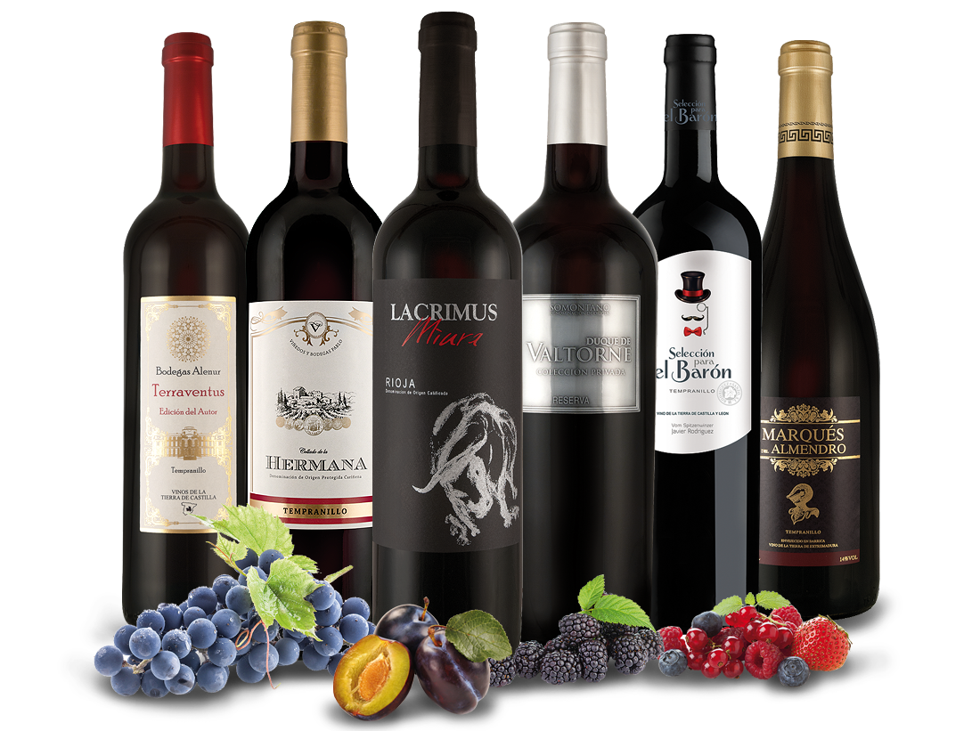Spanische Sommerweine de Luxe mit 6 Flaschen Rotwein9,98? pro l