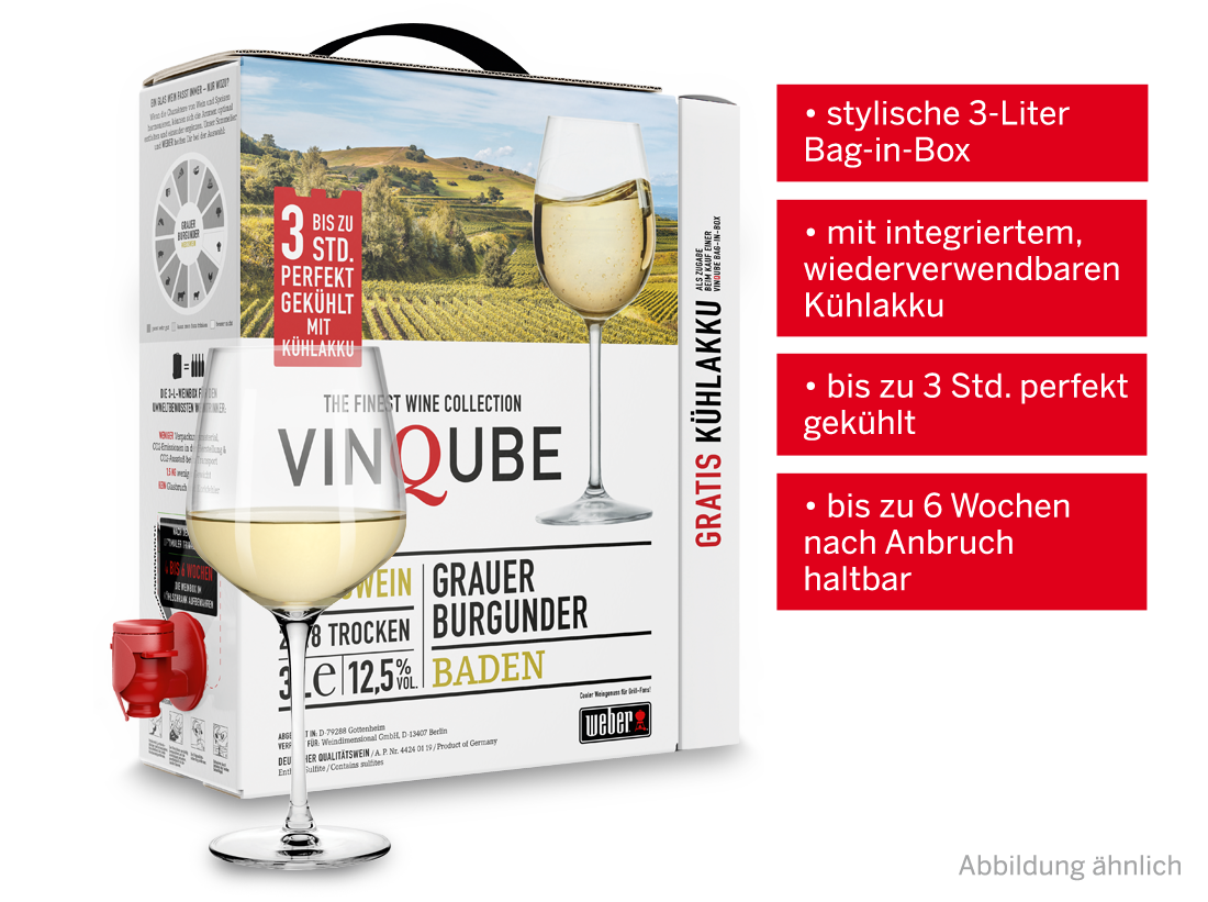 Weißwein Vinqube Grauer Burgunder Baden 3 l mit wiederverwendbaren Kühlakku Baden 6,66? pro l