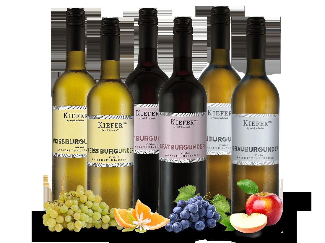 Weingut Kiefer Burgunder-Probierpaket8,67? pro l