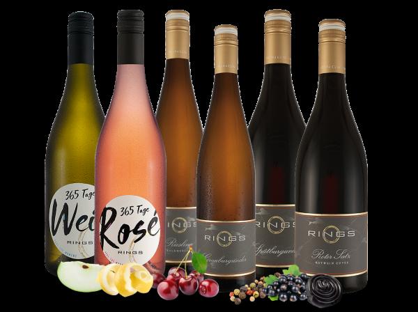 Kennenlernpaket Basis- und Gutsweine vom Weingut Rings aus der Pfalz