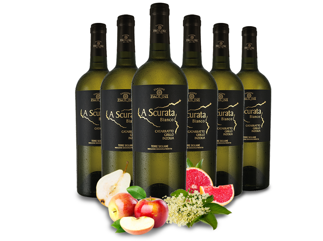 Probierpaket 6 Flaschen Cantine Paolini A Scurata Bianco7,78€ pro l