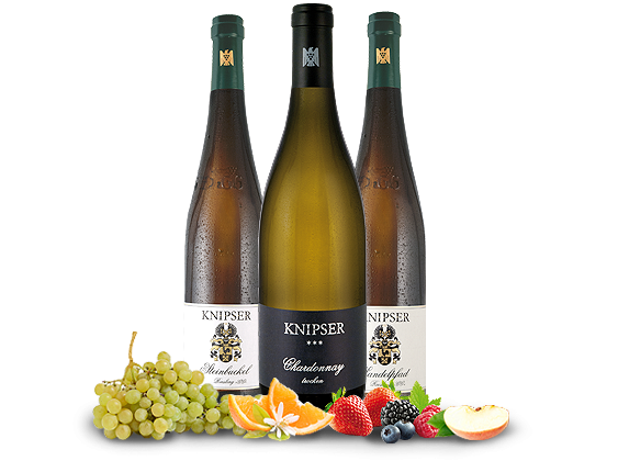 Kennenlernpaket Weingut Knipser aus der Pfalz 3Fl. Große Weißweine