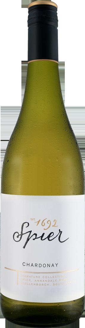 Weißwein Spier Signature Chardonnay Western Cape 10,60? pro l