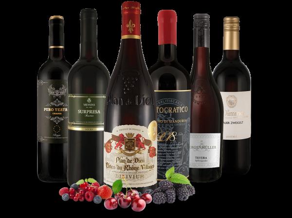 Probierpaket vinival 2018 Ausgewählte Rotweine