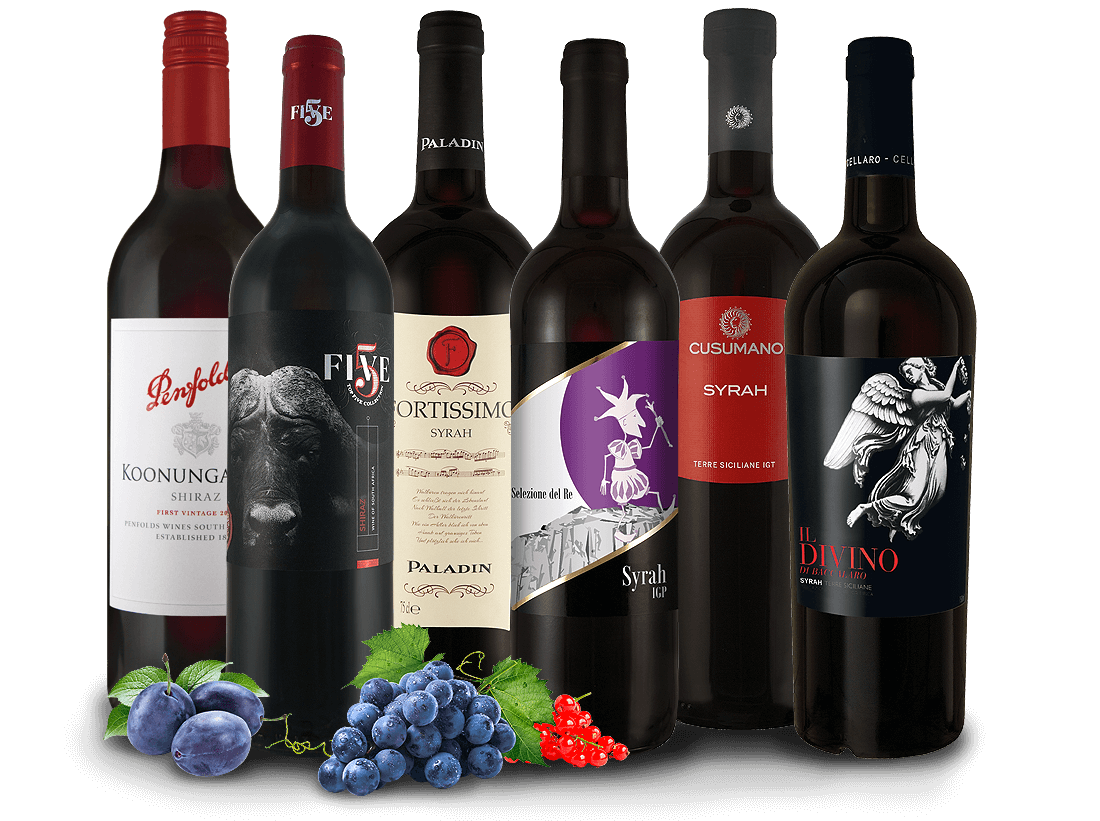 Shiraz/Syrah Entdecker Wein-Probierpaket11,11? pro l