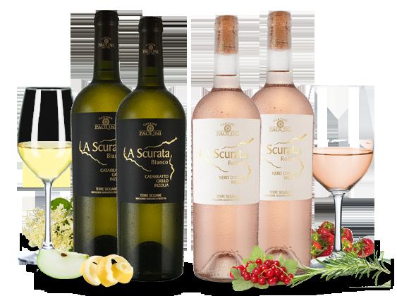 Kennenlernpaket Cantine Paolini A Scurata Bianco & Rosato8,33€ pro l