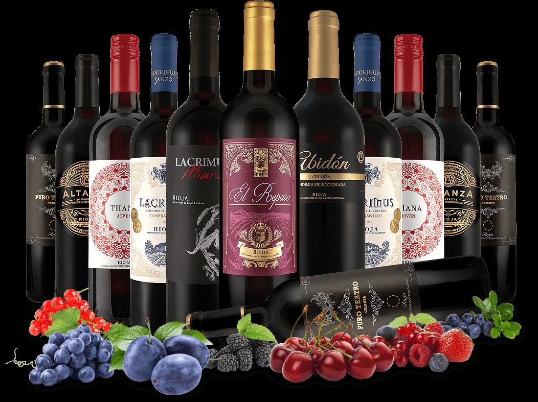 Probierpaket Die köstliche Welt der Rioja-Weine8,33? pro l
