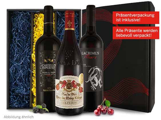 Rotwein Rotwein Weingeschenk Europa Selection Apulien, Rhône, Rioja 15,51? pro l