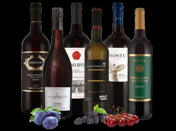 Das große Merlot Weinpaket