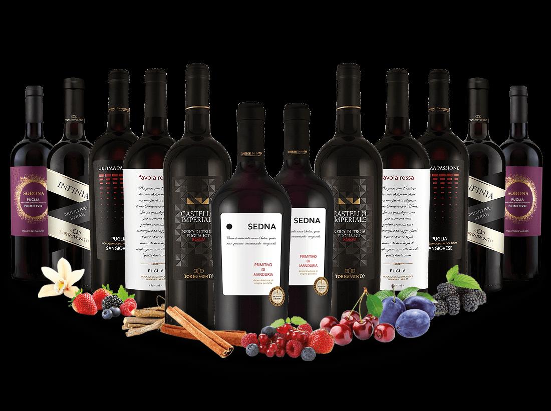 Best of Italien Rotwein Entdeckerpaket8,33€ pro l