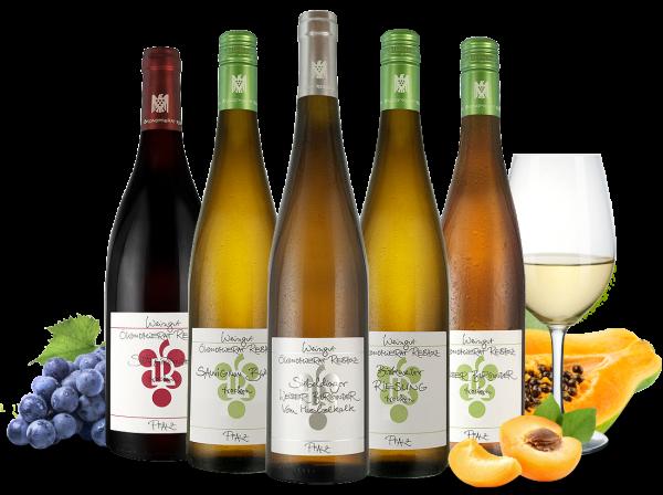 Kennenlernpaket Weingut Rebholz aus der Pfalz