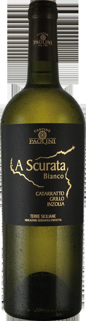 Weißwein Cantine Paolini Catarratto Grillo Inzolia A Scurata Bianco IGP Sizilien 7,32€ pro l