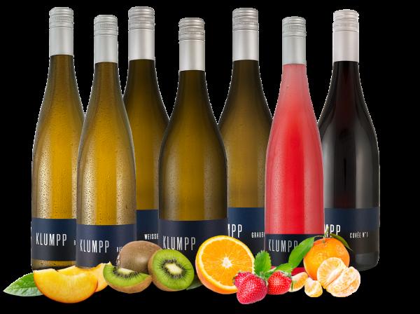Kennenlernpaket 7 Fl. Gutsweine vom Weingut Klumpp aus Baden