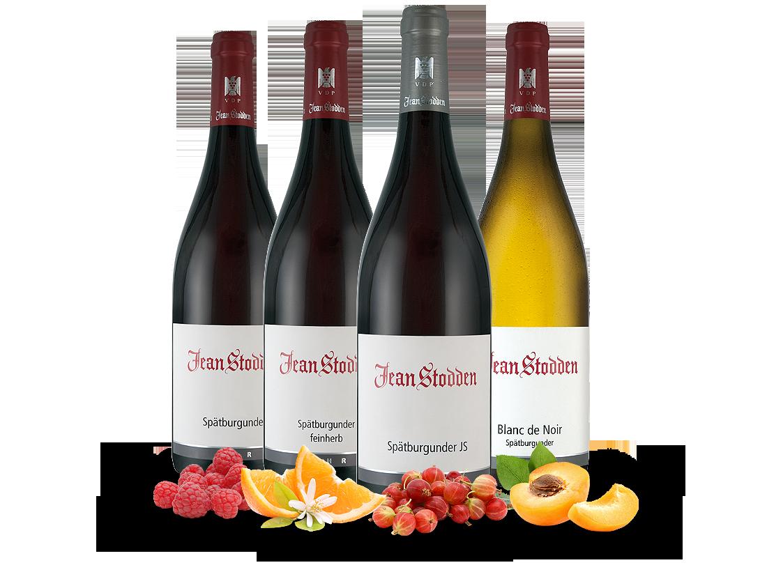 Kennenlernpaket 4 Fl. Feine Weinauswahl Rotweingut Jean Stodden19,67? pro l