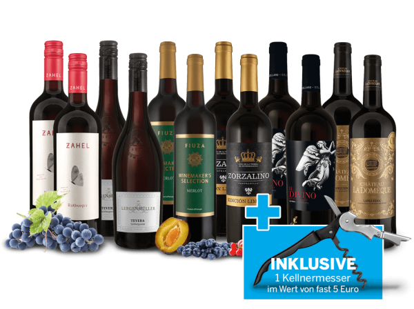 Lagerräumungs-Weinpaket XXL 2020