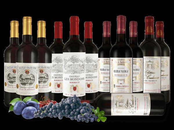 """Bordeaux-Entdeckerpaket """"Rotweine von Familien-Châteaux"""""""