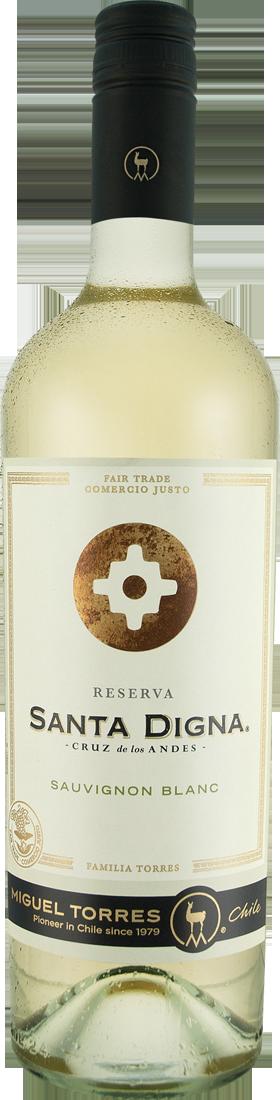 Weißwein Torres Santa Digna Sauvignon Blanc Reserva Central Valley 9,72? pro l