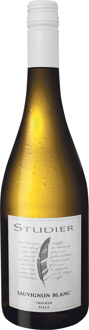 Weißwein Studier Sauvignon Blanc Pfalz 11,87€ pro l