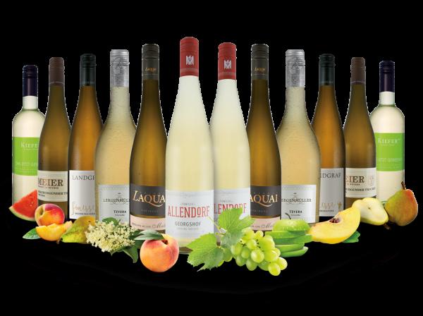 Best of Deutschland Weißwein Entdeckerpaket