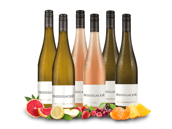 Kennenlernpaket Weingut Dreissigacker mit 6 Flaschen