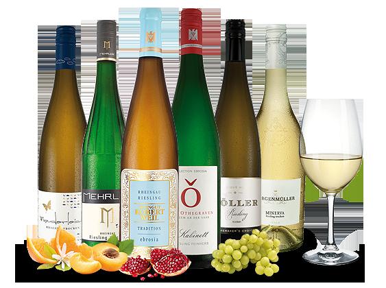 Die besten Riesling-Weine zum Probieren9,98€ pro l