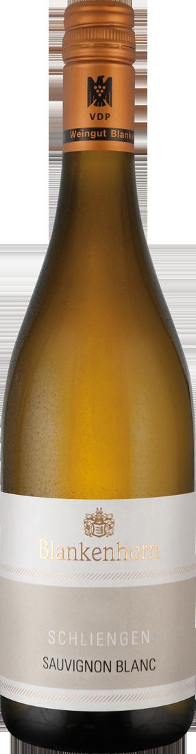 Weißwein Blankenhorn Sauvignon Blanc trocken VD...