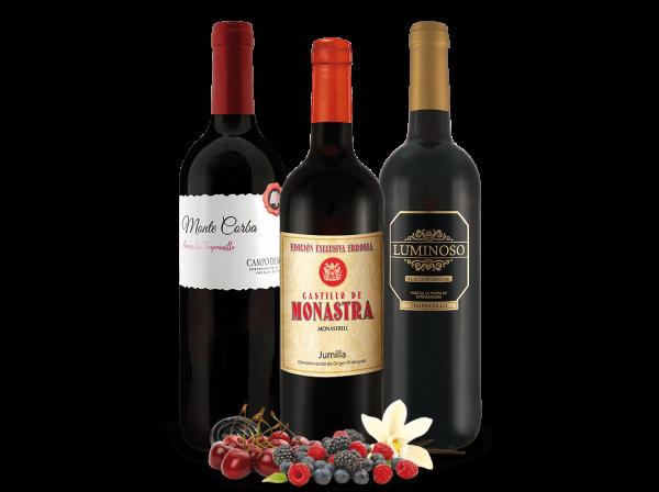 Weinpaket Spanien Kennenlern-Trio