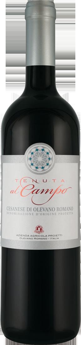 Rotwein Tenuta al Campo Cesanese di Olevano Romano DOP Latium 7,87€ pro l